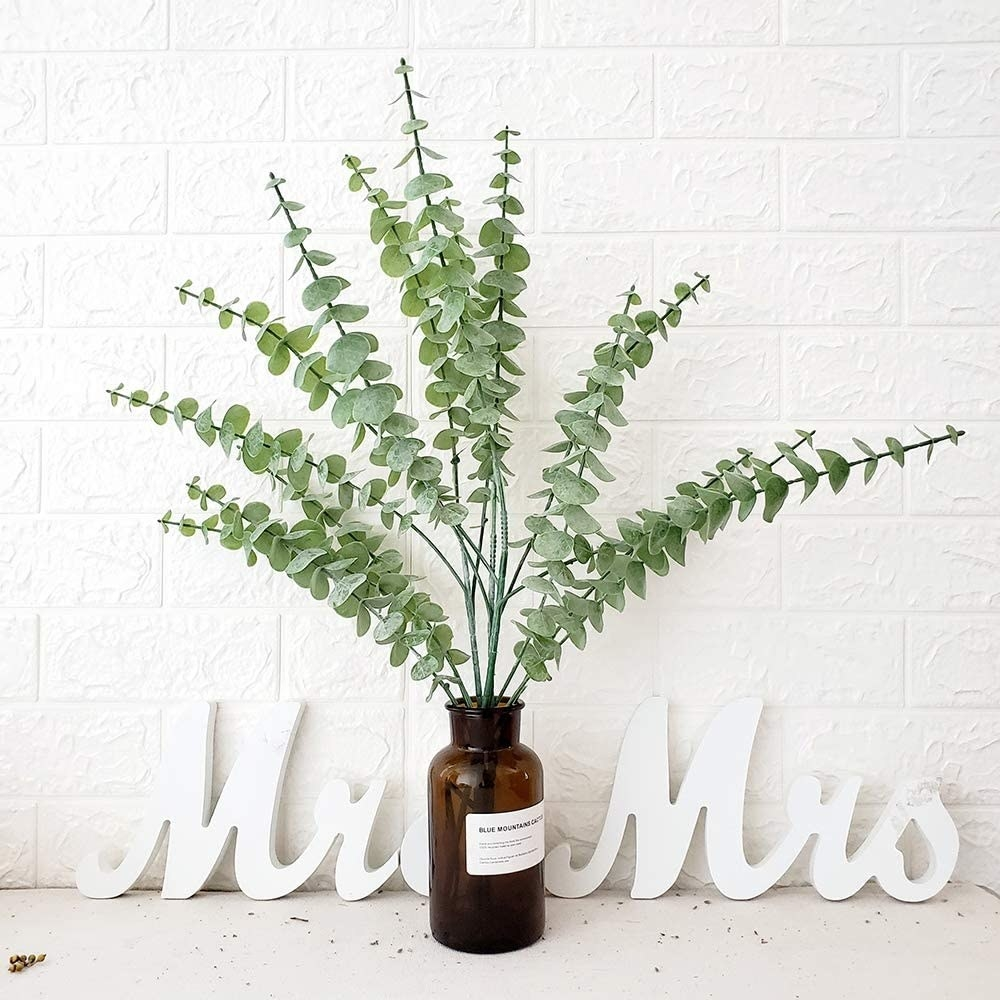 A trio of eucalyptus flowers in a vase