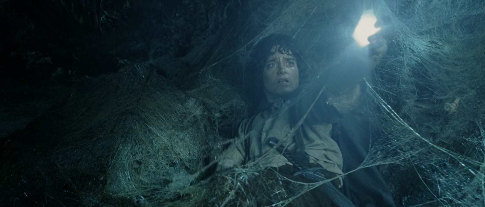 Frodo from shining a bright light in Shelob's tunnel