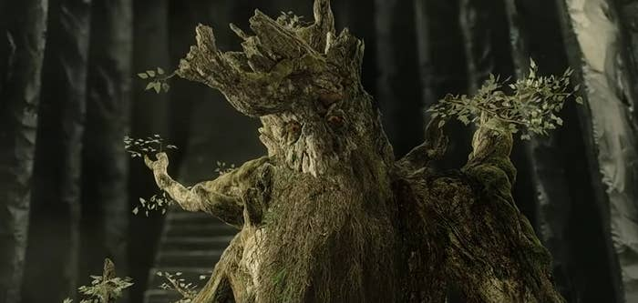 "One of the ents from ""Lord Of The Rings"""