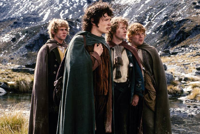 Frodo, Sam, Merry and Pippin looking off in the distance