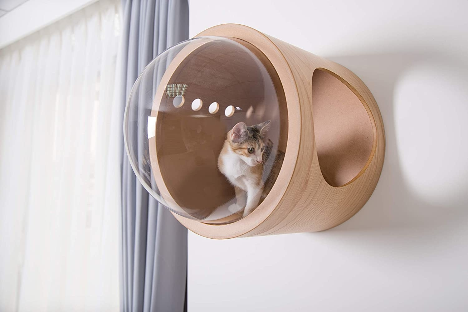 The cat bed, mounted to the wall, with a large round opening on one side and a large clear acrylic viewing bubble