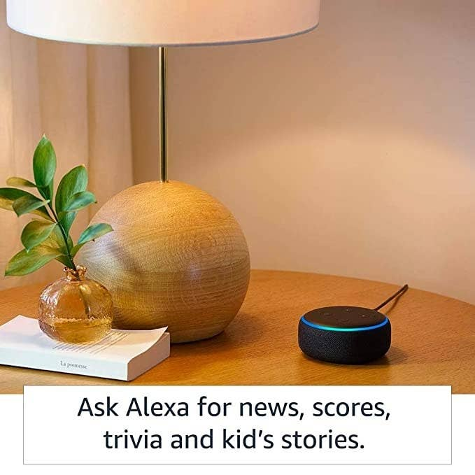 Echo dot speaker on a table next to to a plant and a book.