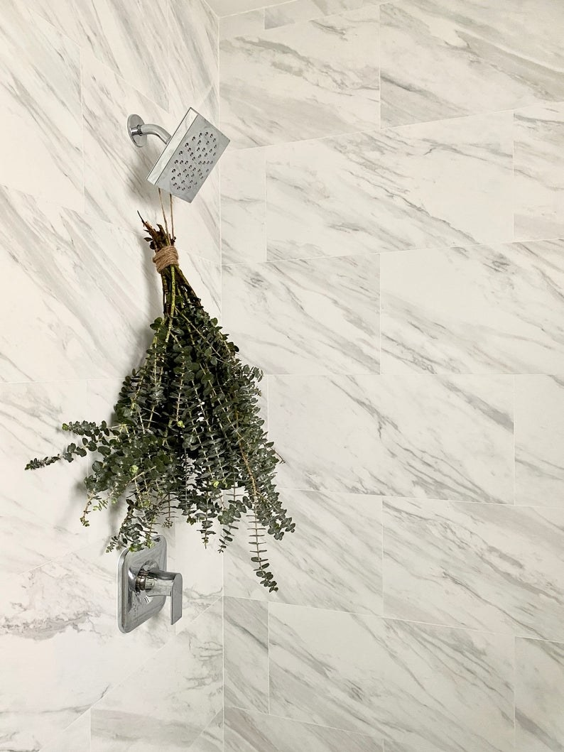Marble tiled bathroom with large bushel of eucalyptus stems hanging from shower head with twine