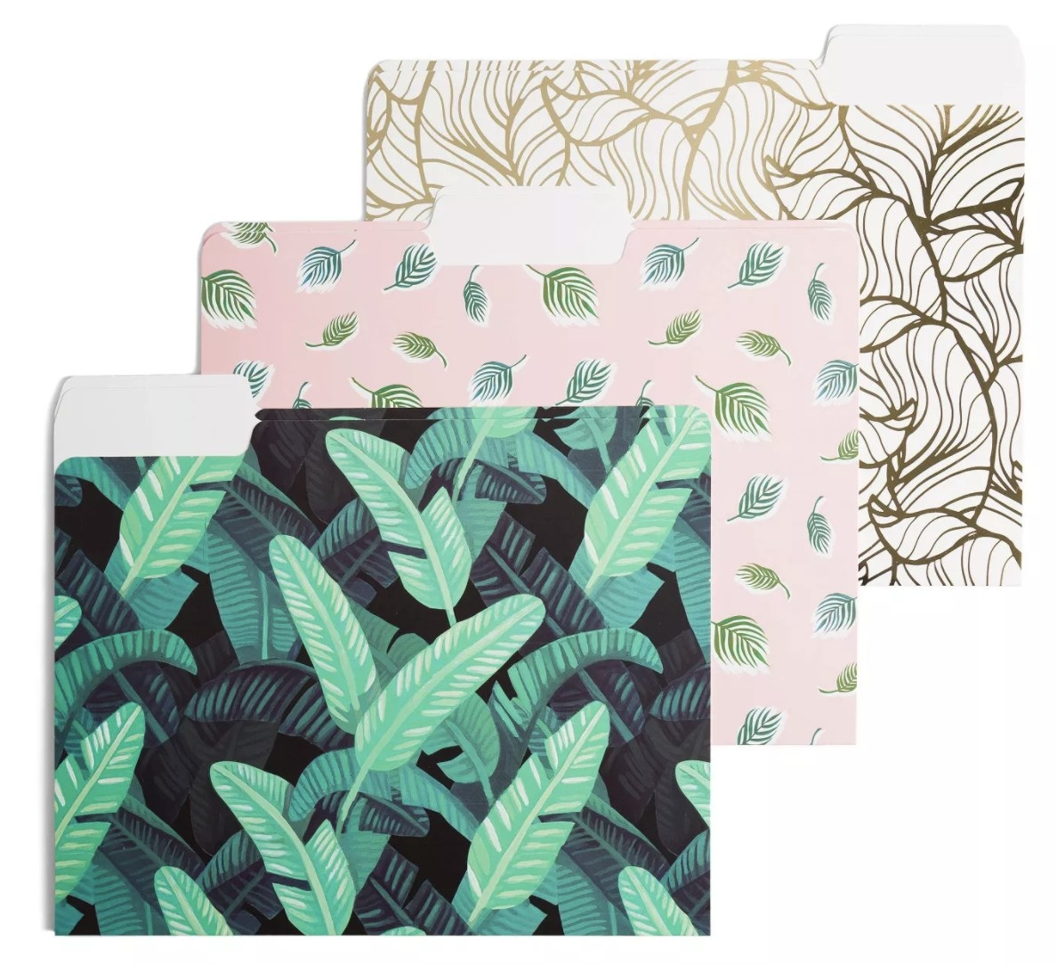 Set of botanical file folders in three different patterns