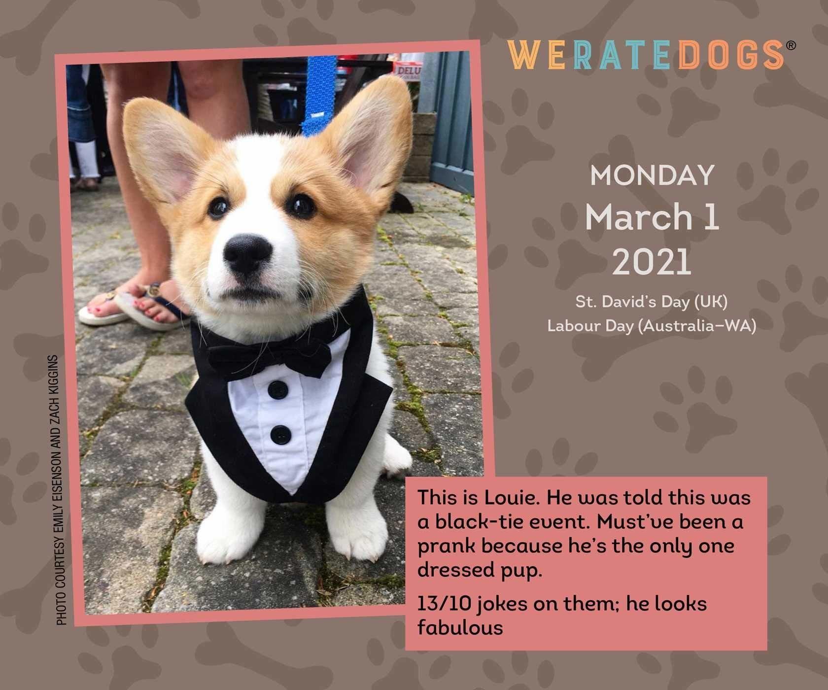 A 2021 calendar with a dog in a tux