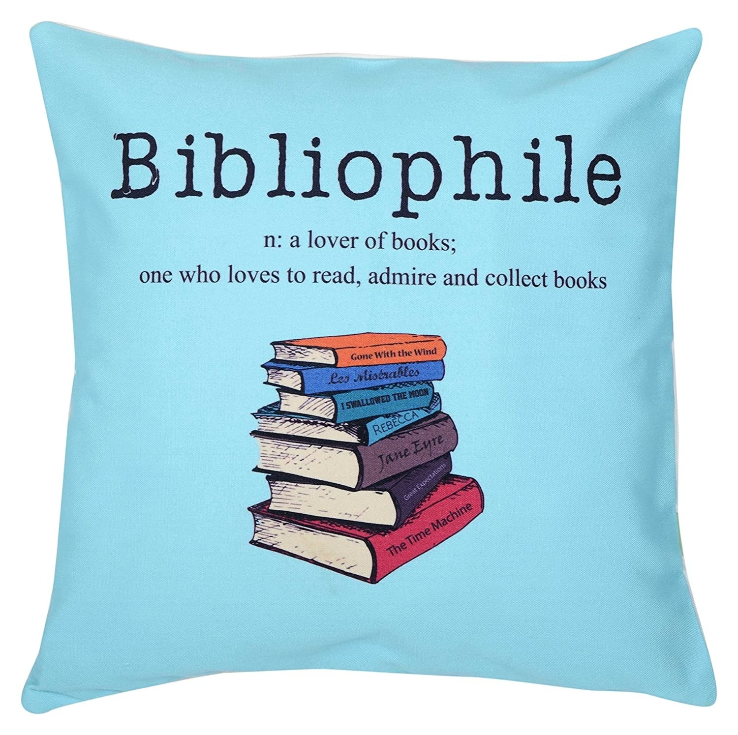 A light blue canvas cushion cover with the definition of bibliophile and a few books printed on it.