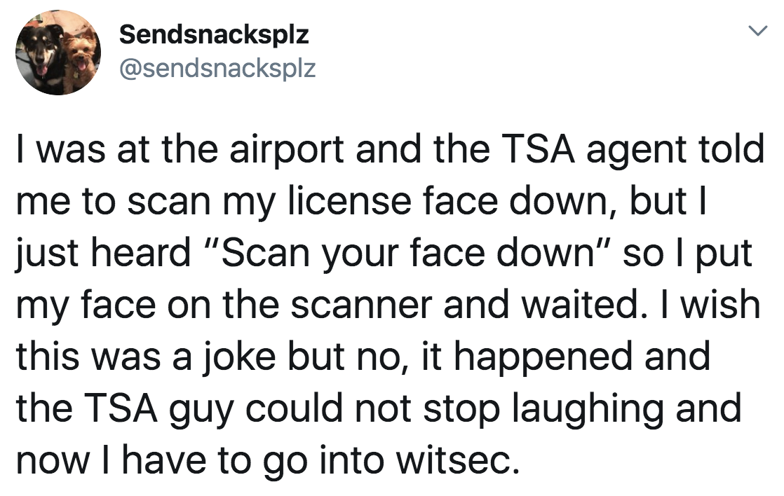 tweet reading i was at the airport and the tsa agent said scan your face down so i put my face on the scanner and waited