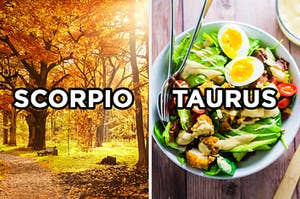 """On the left, a forest in fall labeled """"Scorpio,"""" and on the right, a cobb salad labeled """"Taurus"""""""