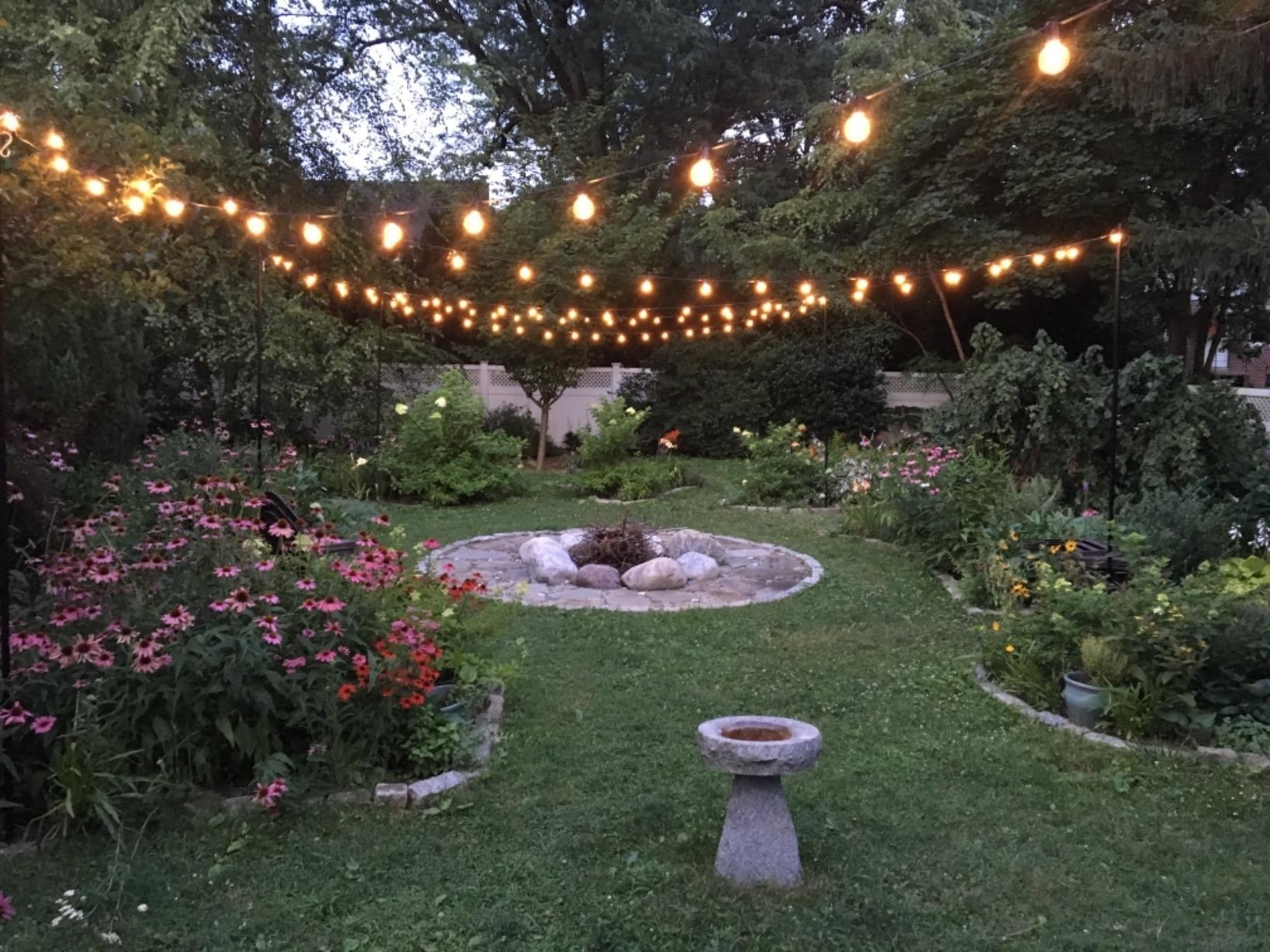 A garden with string lights overhead.