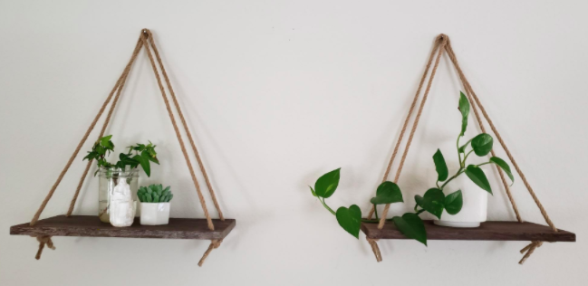 Reviewer shows wooden, triangle-shaped hanging shelves with various green plants on wall