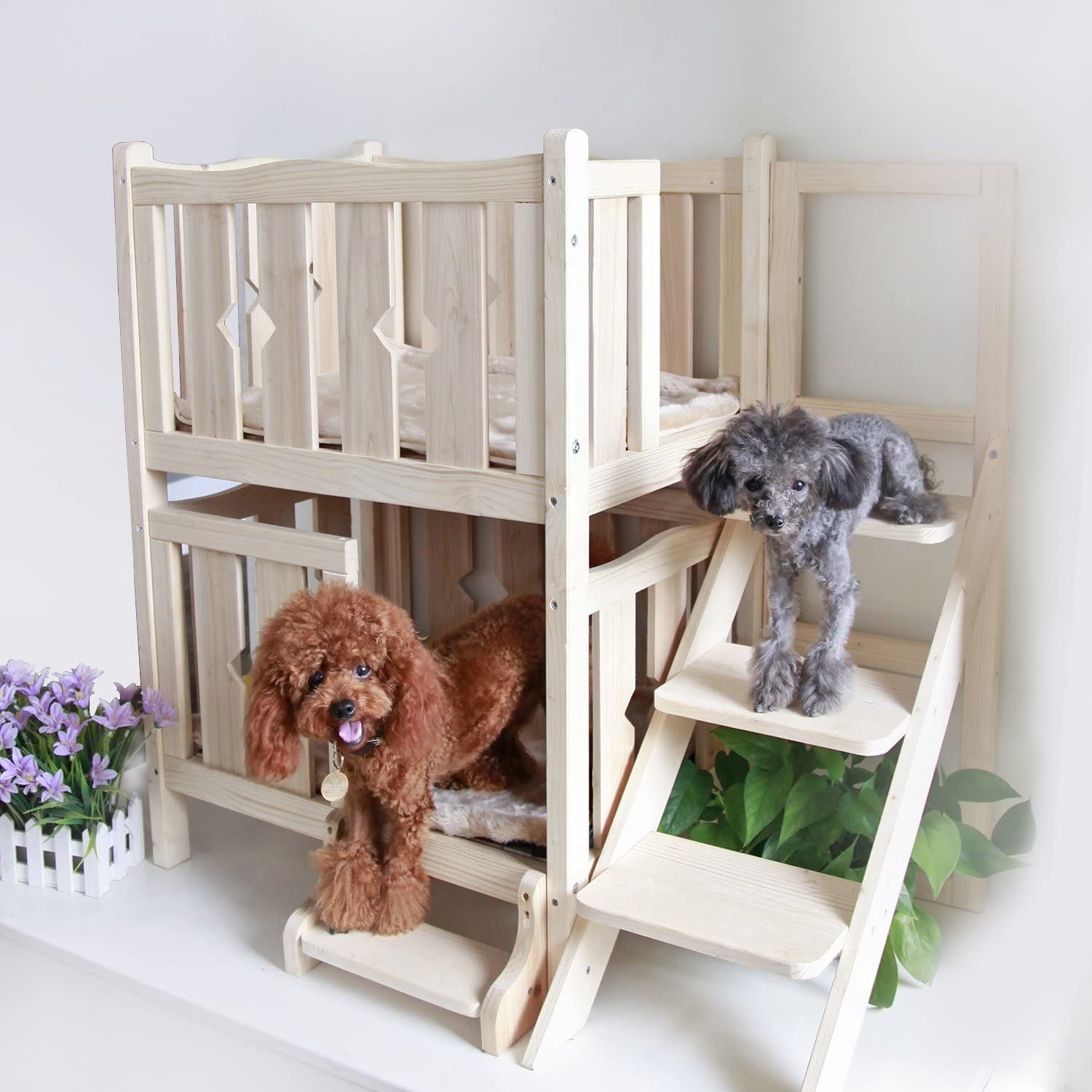 The two-level dog house