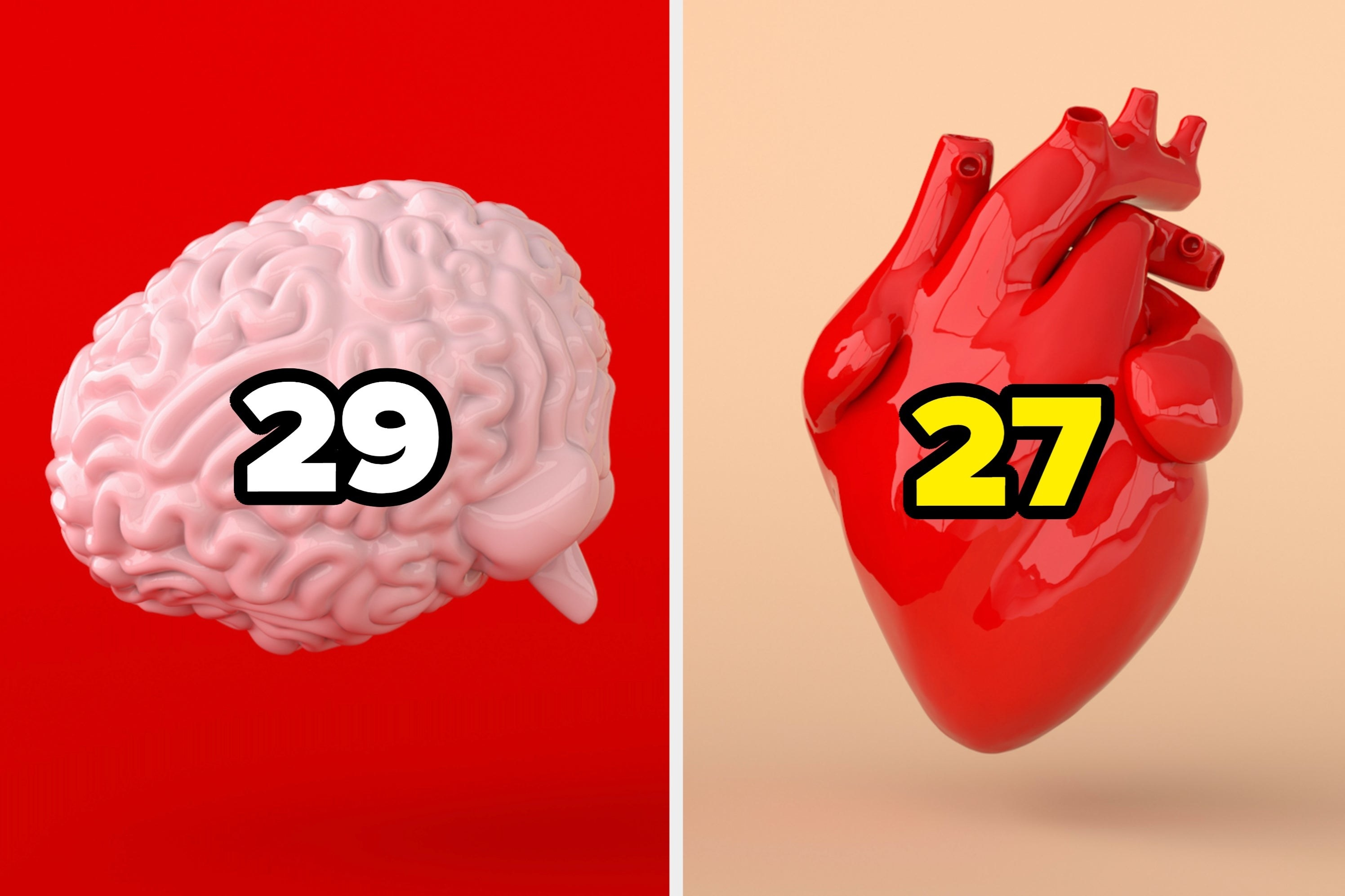 """Brain and heart with the numbers """"29"""" and """"27."""""""
