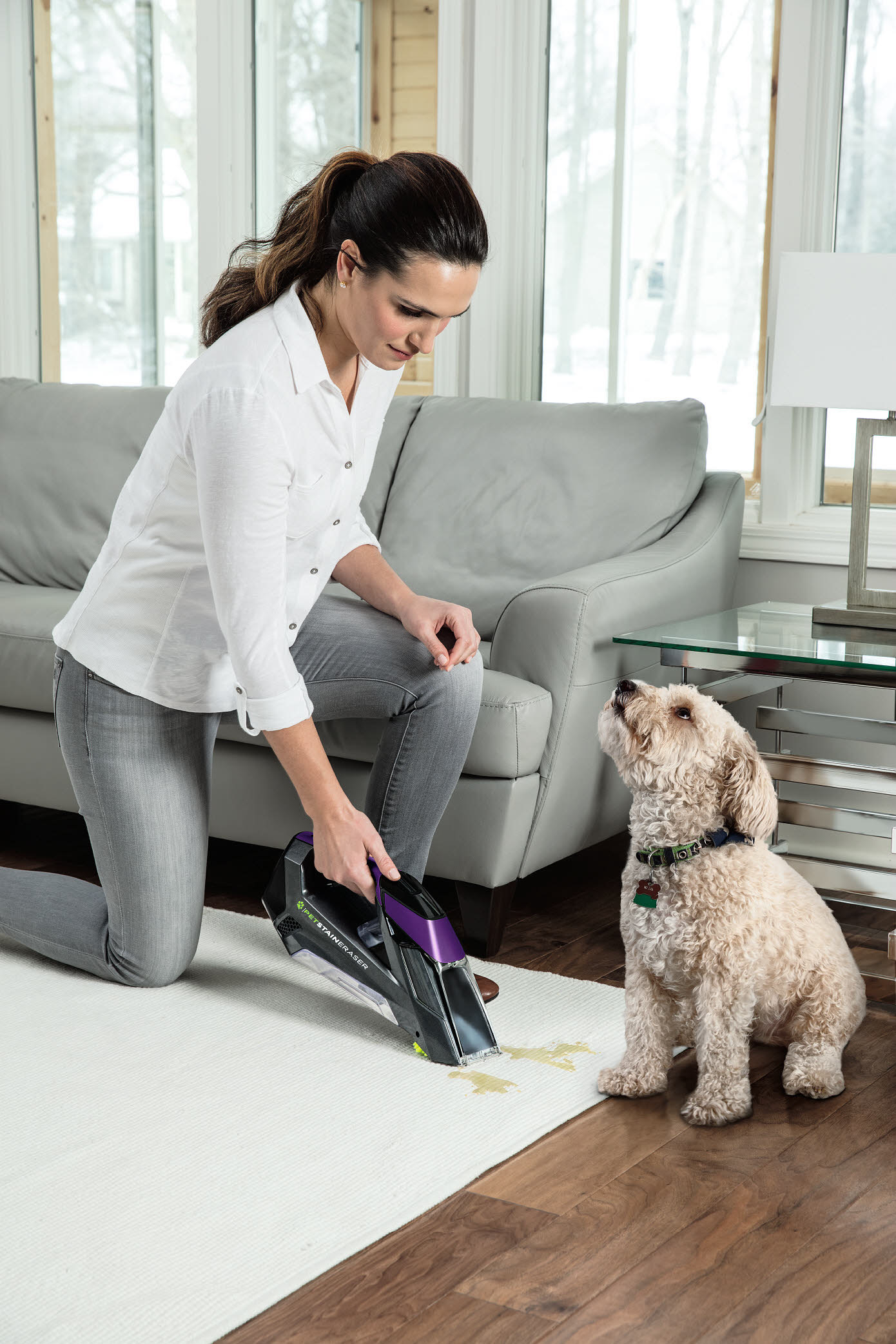 The gray and purple carpet cleaner