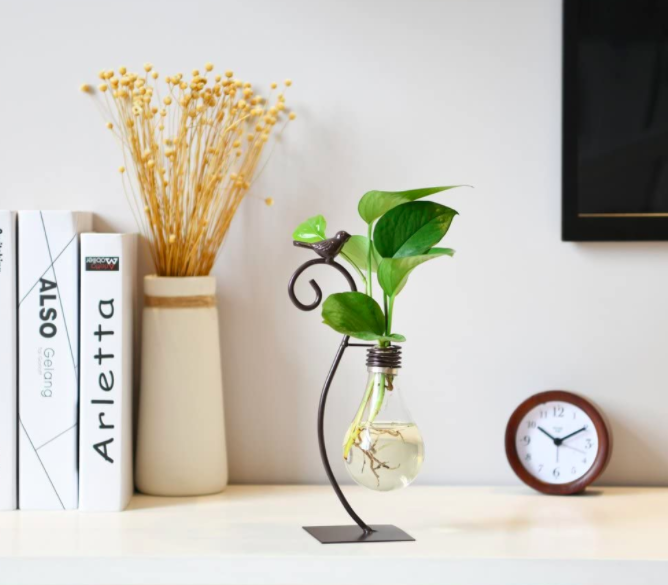 Lightbulb-shaped planter on top of a bookshelf with journals, a wheatgrass plant, and a small brown clock