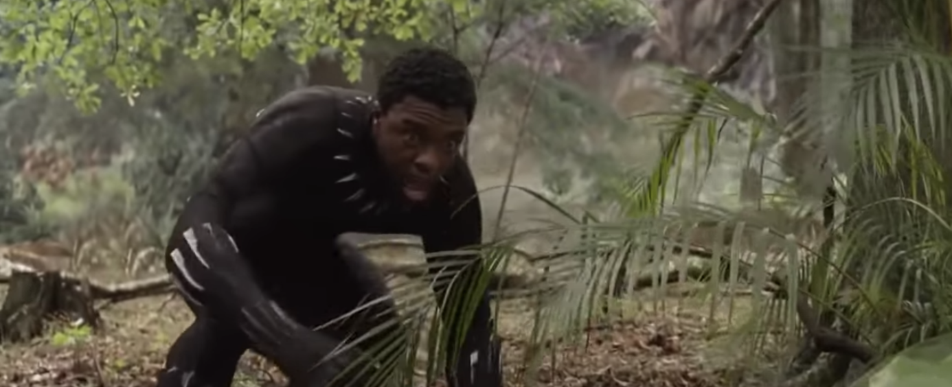T'Challa right before he is dusted in Avengers: Infinity War