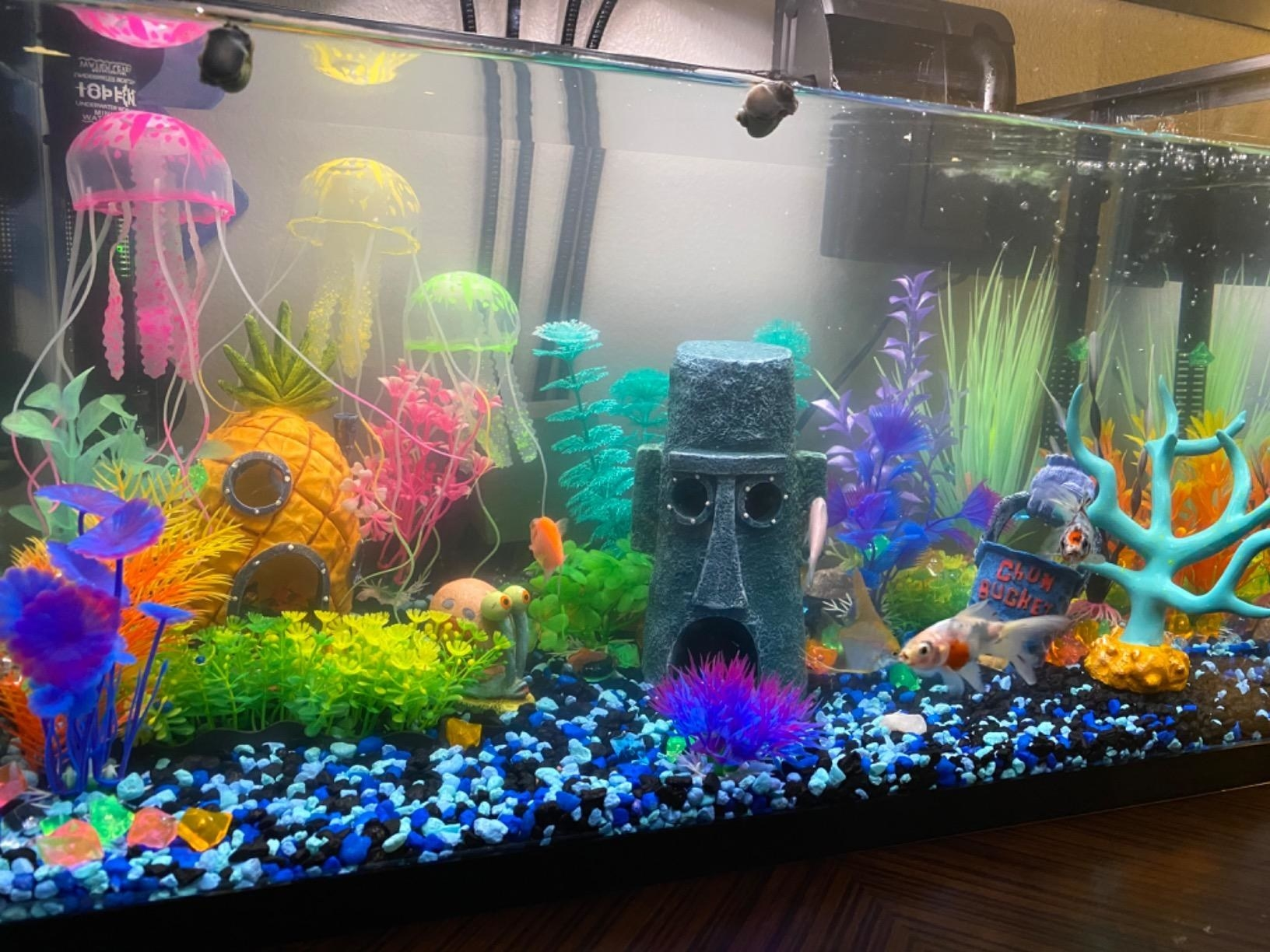 Reviewer's  tank with the artificial plants, some tank decor, and a fish