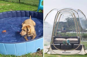 Side by side of dog in doggie pool and pop-up see-through tent