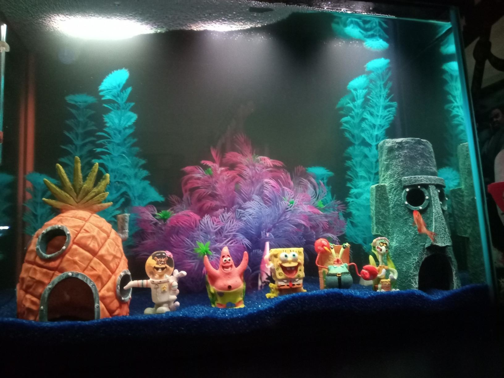 Reviewer's tank with six Spongebob ornaments, including Spongebob, Patrick, and Squidward, posed at the bottom