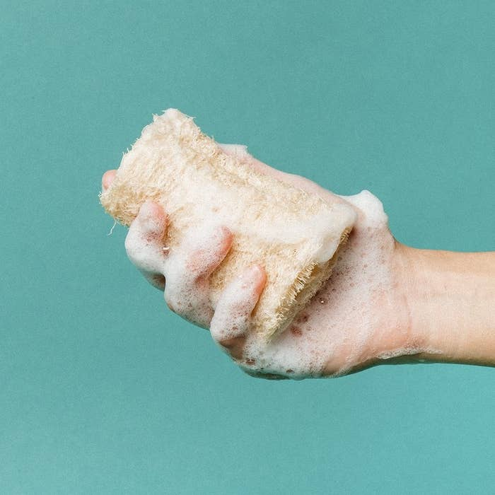 Hand holding a sudsed up loofah