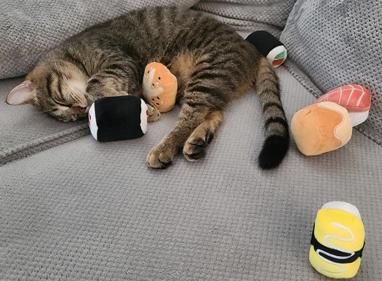 A kitten asleep and cuddling an assortment of black yellow red and yellow stuffed sushi toys