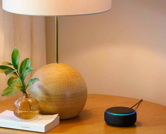 Echo Dot placed on a table alongside a lamp, a book, and a plant.