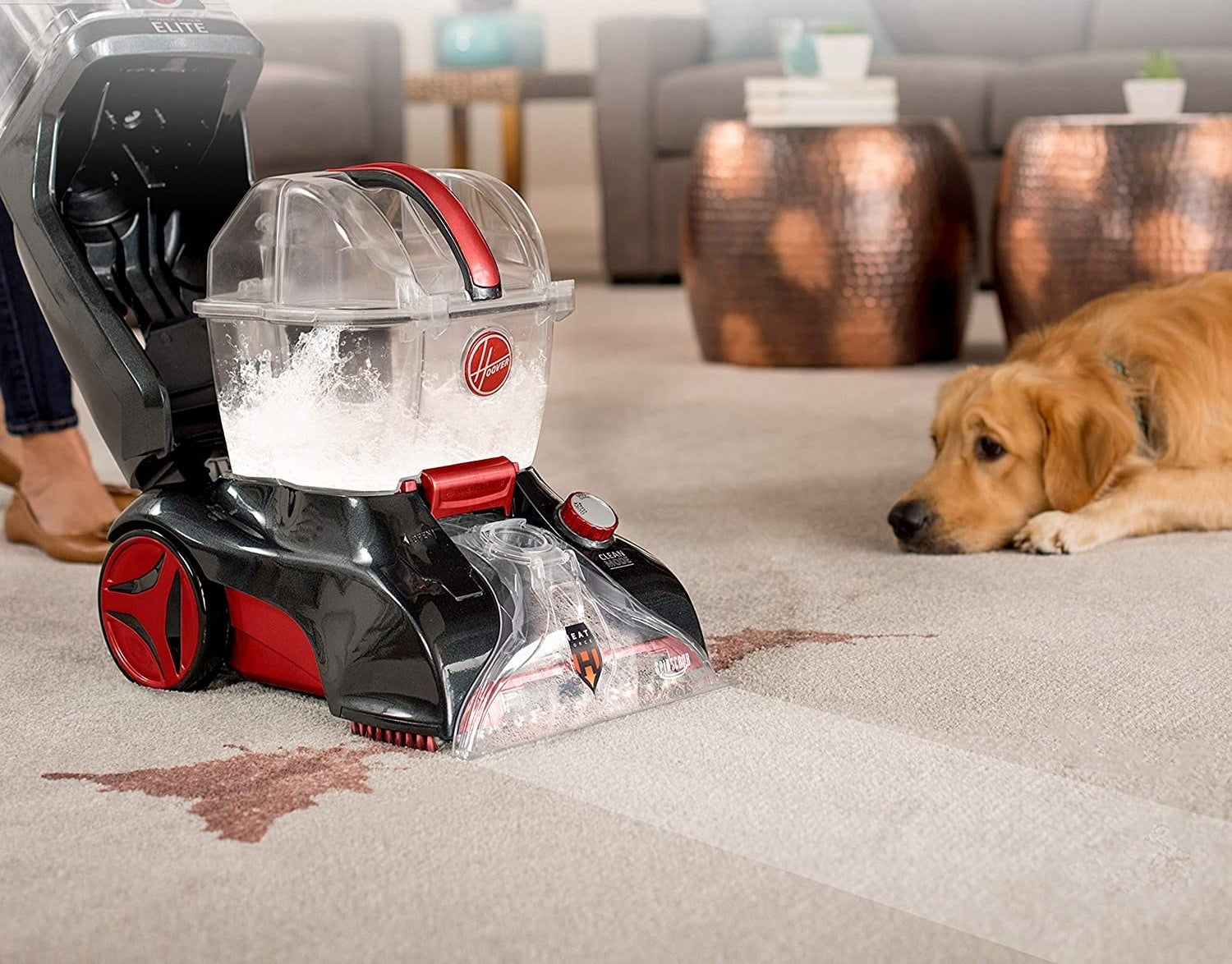 The vacuum in deep clean mode removing deep-set stains like red wine
