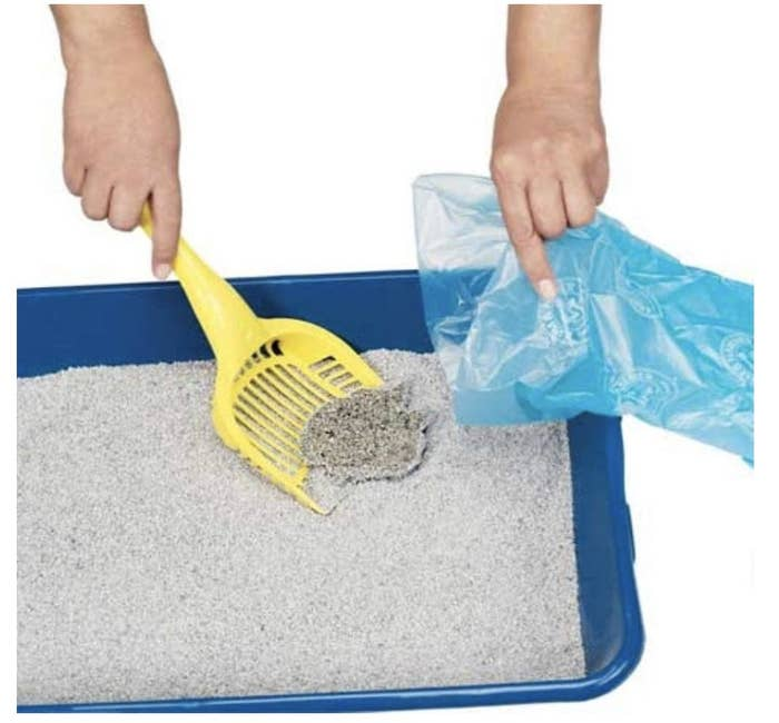 Pet waste bags are used to clean out a litter box