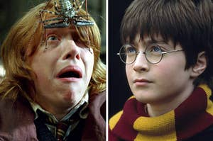 Ron Weasley is panicking with a bug on his forehead on the left with Harry Potter squinting on the right