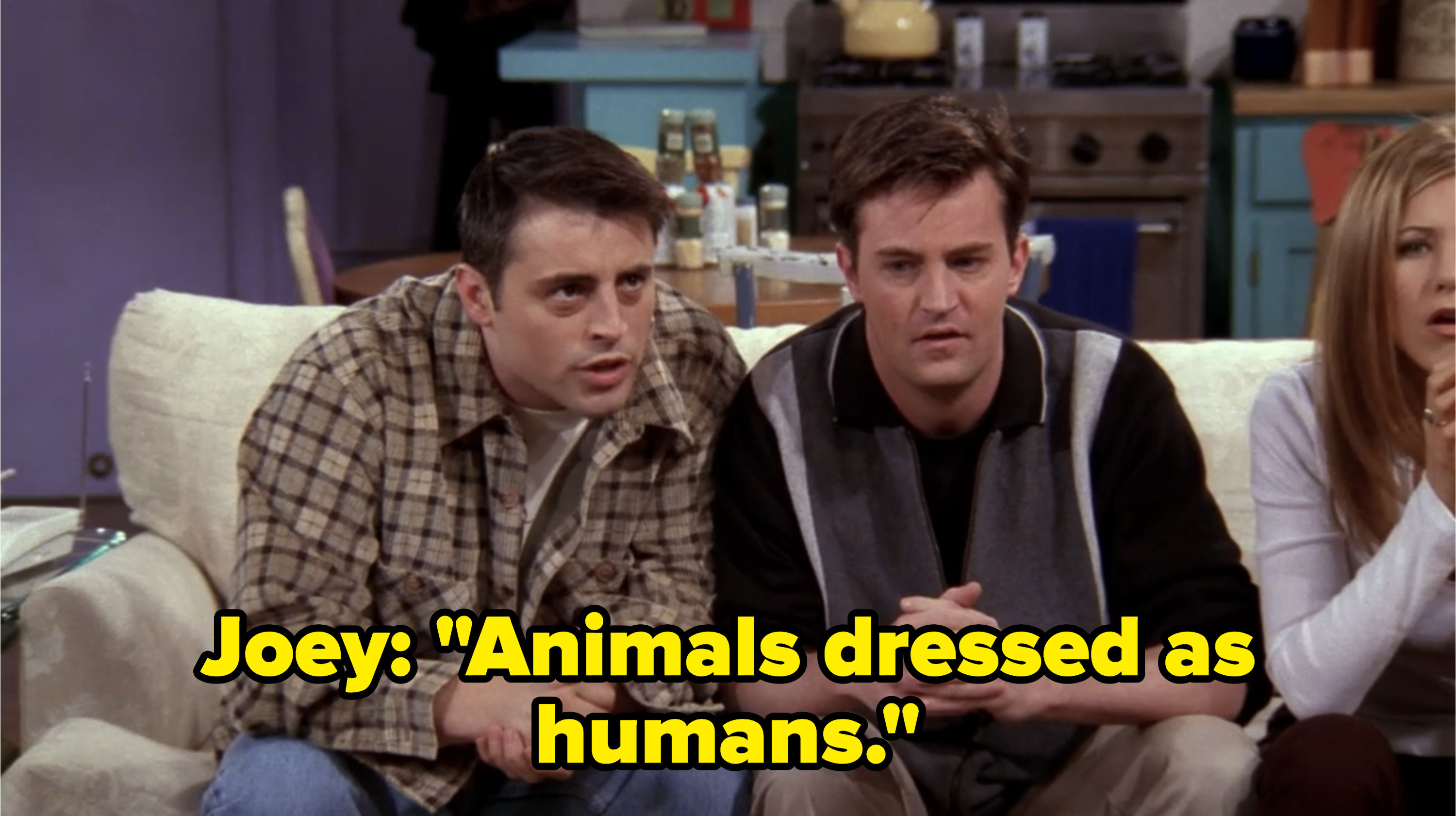 """Joey says """"Animals dressed as humans"""""""