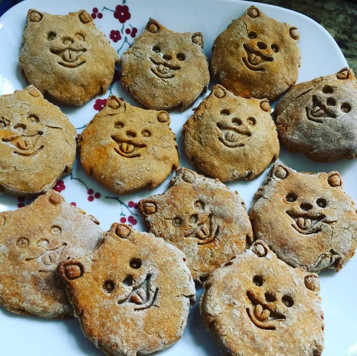 A reviewer's photo of homemade Pomeranian cookies