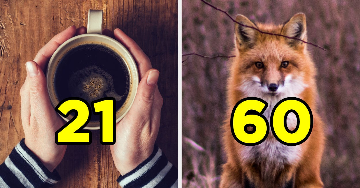 This Is Weird, But We Can Guess Your Age Based On Your Favorite Things - buzzfeed