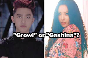 An image of Sunmi from her music video for Gashina and an image of Kyungsoo from Exo's music video for Growl