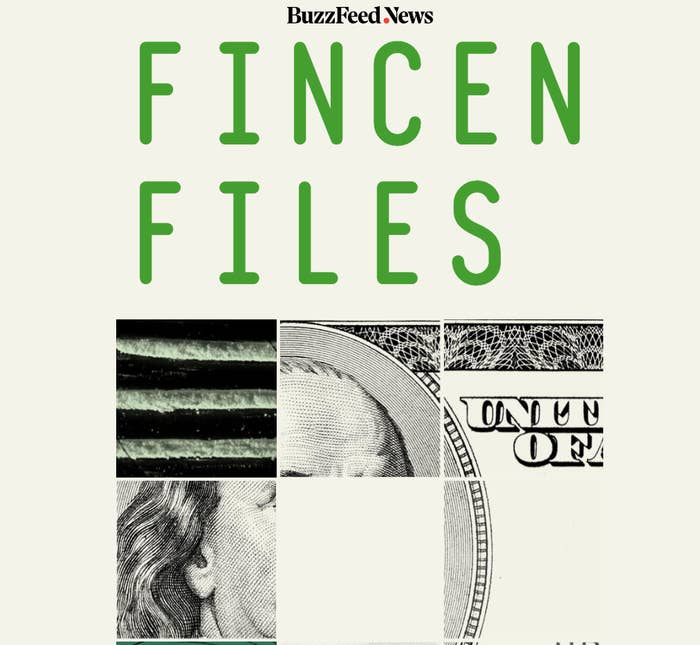 An image of the logo of the FinCEN Files.