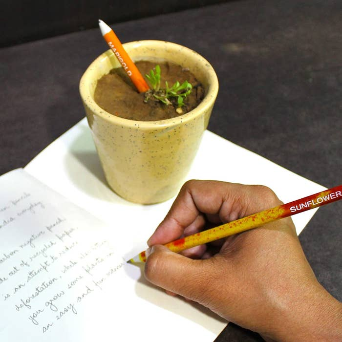 A person using the pencil.