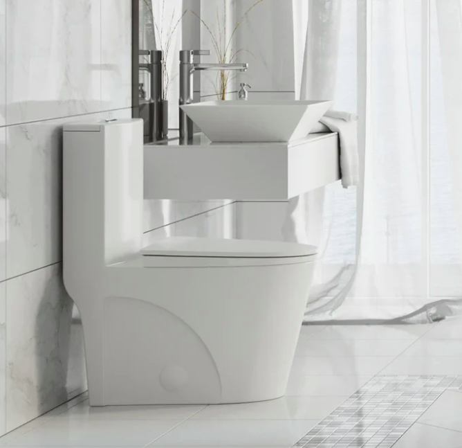 White dual-flush toilet next to white sink with a cool bowl-shaped sink