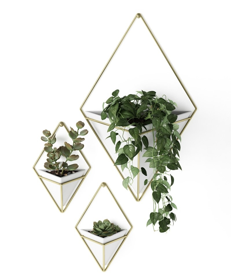 The diamond shaped planter vases