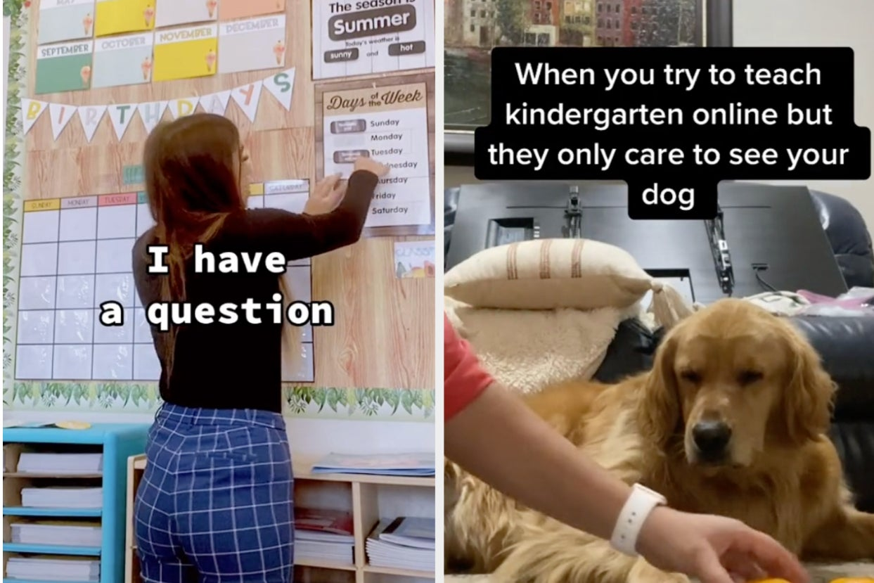 18 Hilarious Moments From Online Classes You'll Wanna Mute If You're On Zoom Right Now