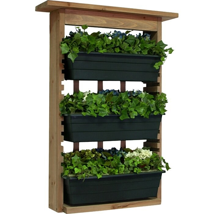 The Brown Houghton 3 Piece Wood Wall Planter with plants in each tier