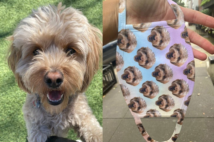 This Face Mask With My Dog's Photo On It In The Best Purchase I've Made Lately