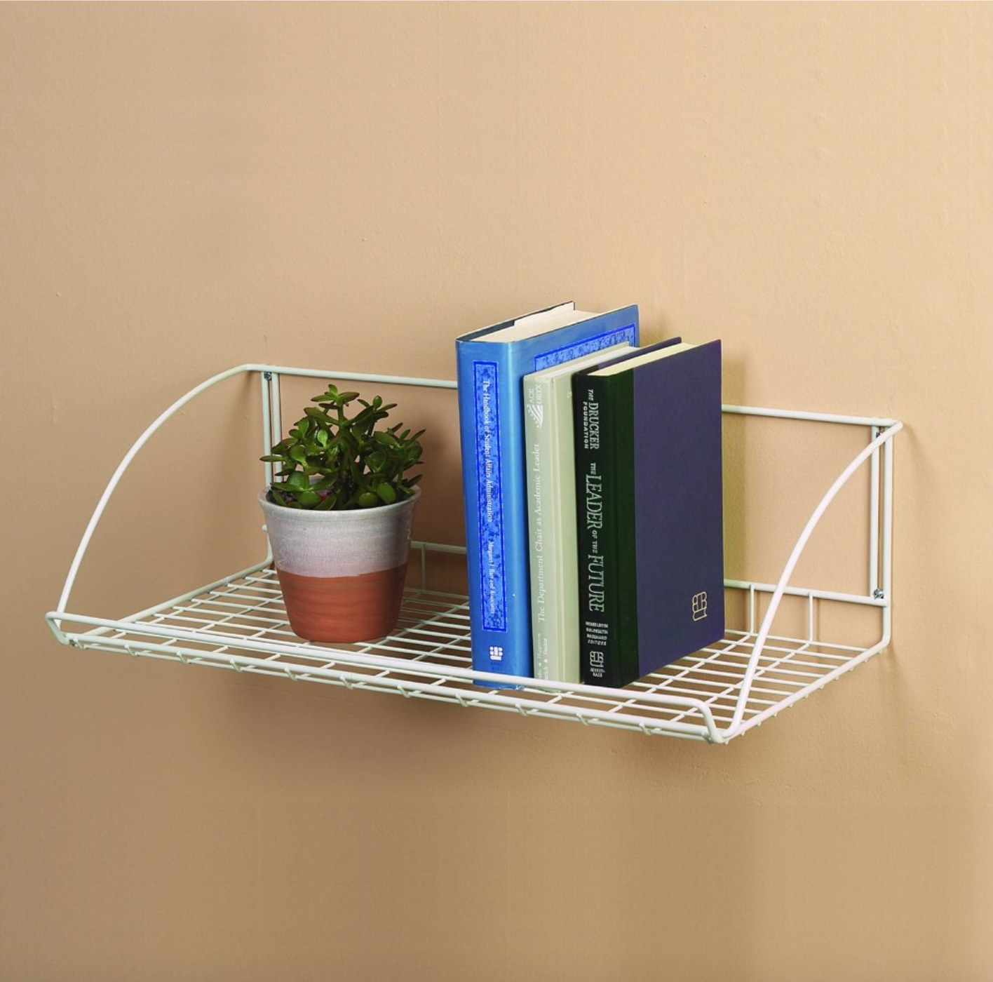 The shelf being used to hold books and a plant