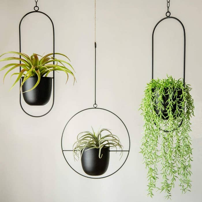 Three hangers in black metal with oval or circular rings around flower pot