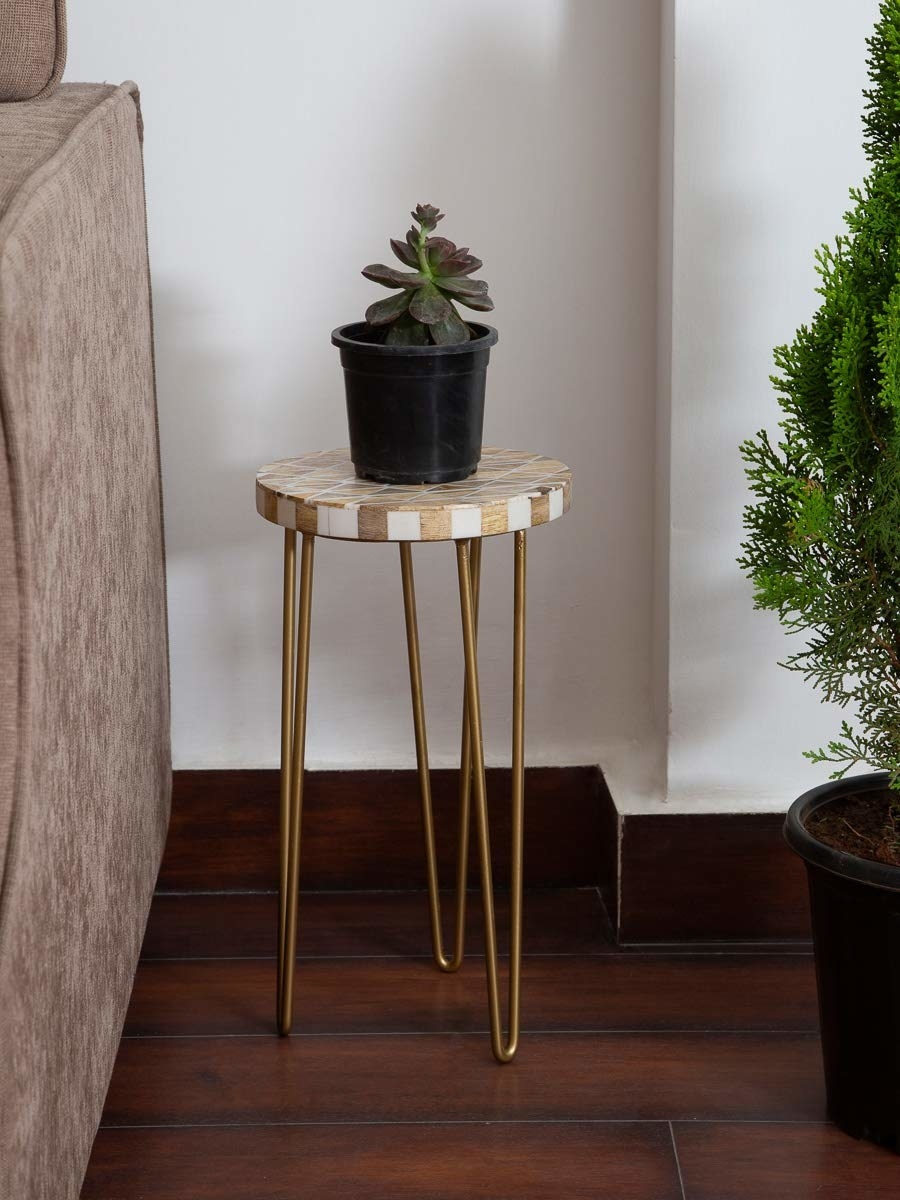 A white and golden hairpin table with a plant kept on it.