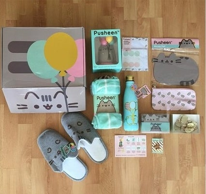 the Pusheen box with many Pusheen-themed items such as slippers and a water bottle