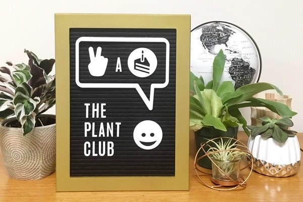 """house plants on a desk with a sign that says """"The Plant Club"""""""