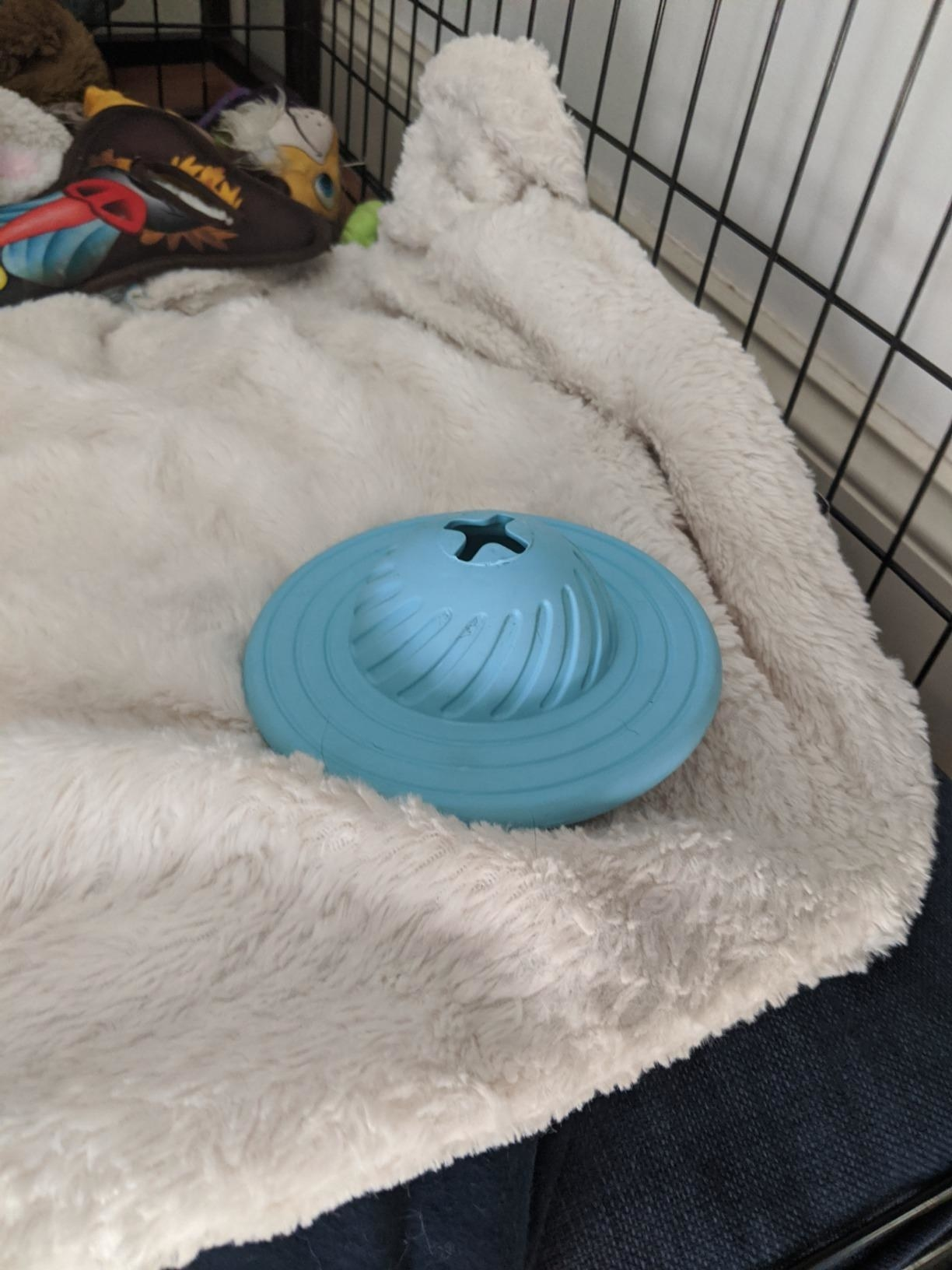 The toy in blue, flying saucer-shaped with a cross-shaped opening for treats to be dispensed through