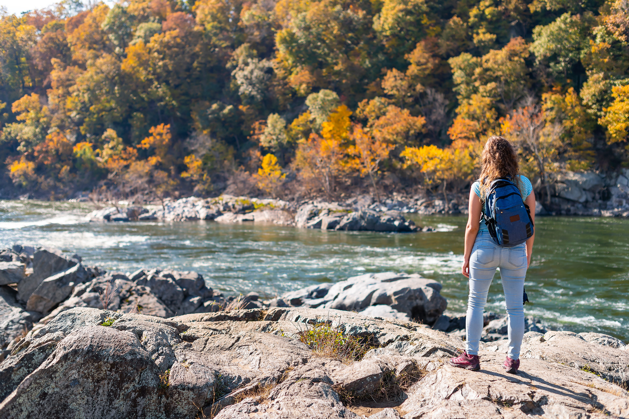 Young woman looking at view of Potomac river in Great Falls with autumnal, colorful foliage