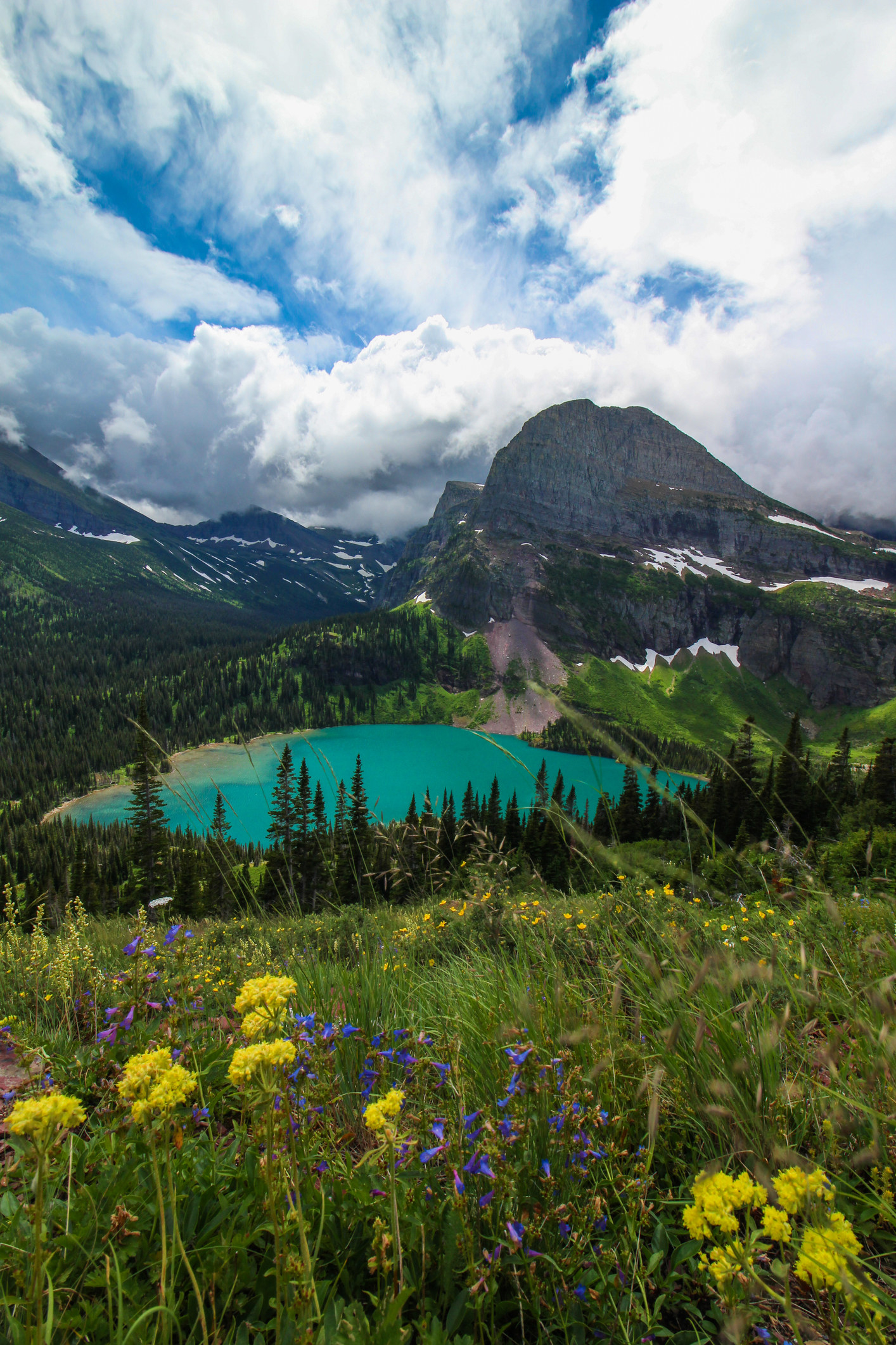 The view of the turquoise Grinnell Lake with wildflowers in the foreground