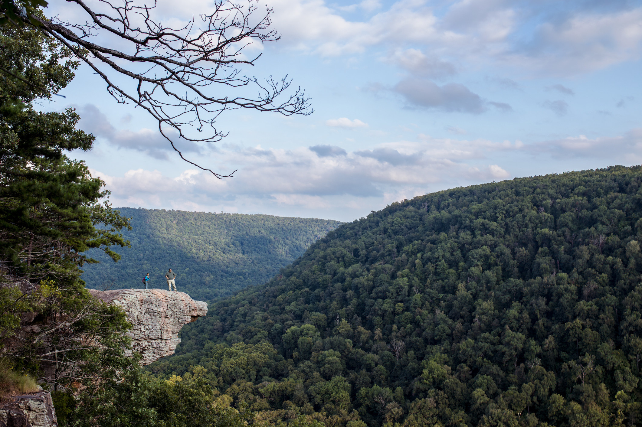 Two hikers stop to take in the view at Whitaker Point