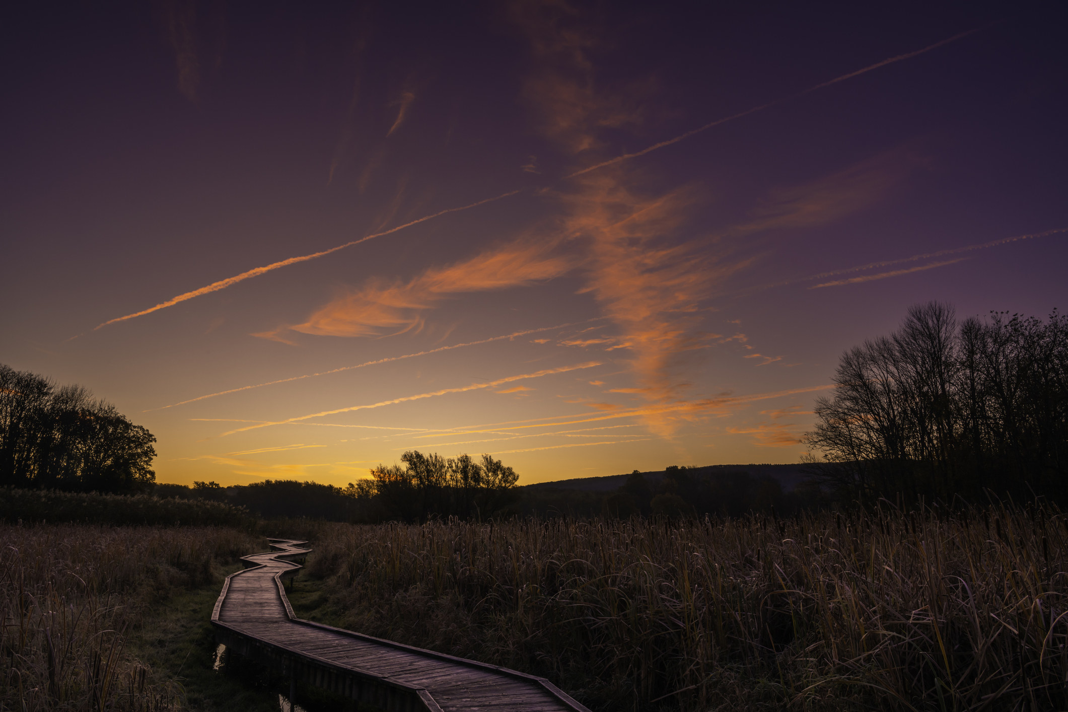 Beautiful sunrise over the boardwalk in Wawayanda State Park