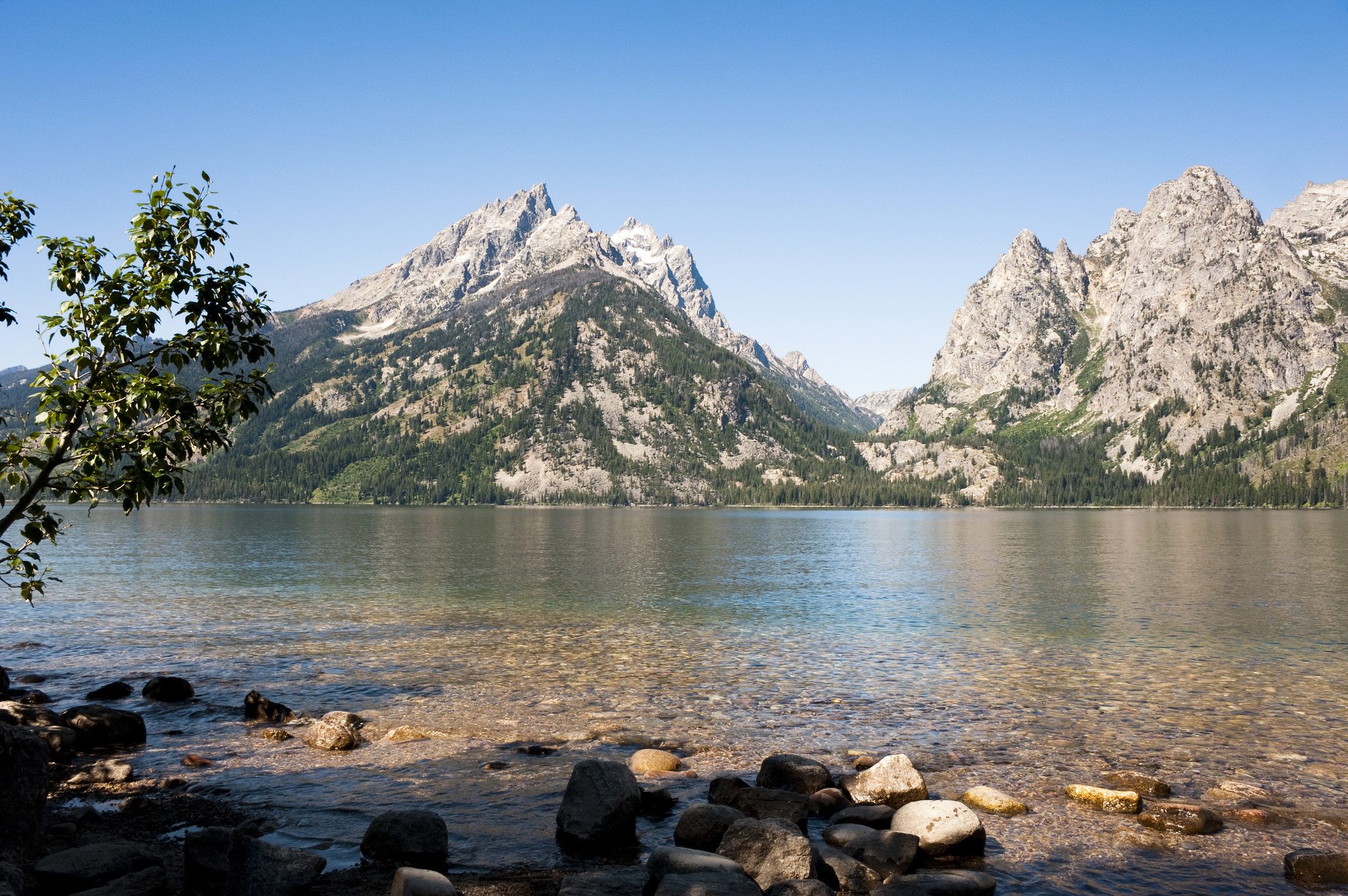 White, pointy mountains of the Teton Range huddle against the clear waters of Jenny Lake